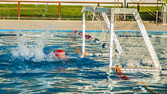 water & ball sports, water polo, swimming, sports, recreation, outdoor recreation, leisure, water sport,
