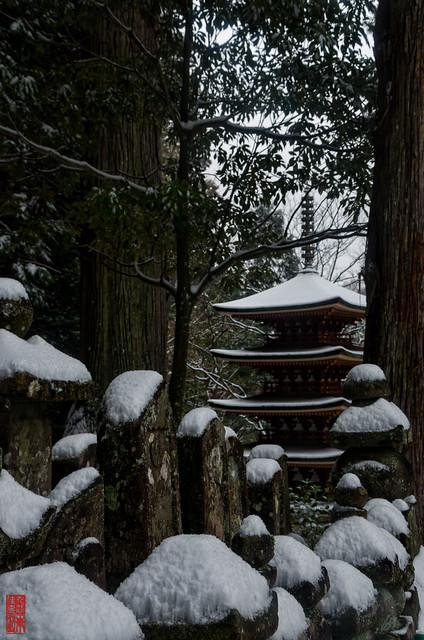 「雪帽子」 室生寺 - 奈良