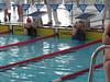 HSC swim photos - Counties 2014 008