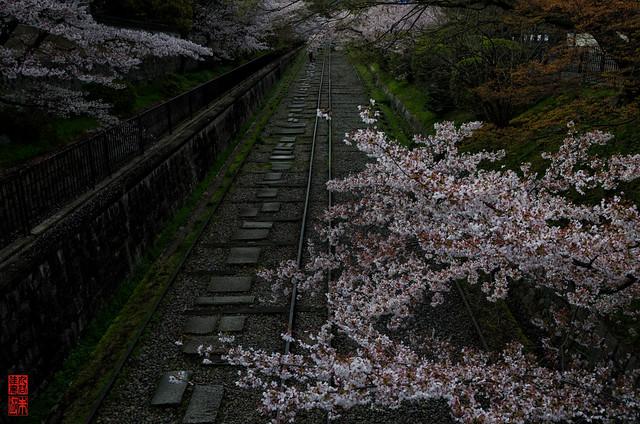 「終焉の頃」 インクライン - 京都