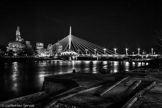Winnipeg Black and White