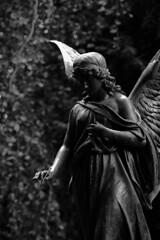 Angel in a cemetery in Dresden