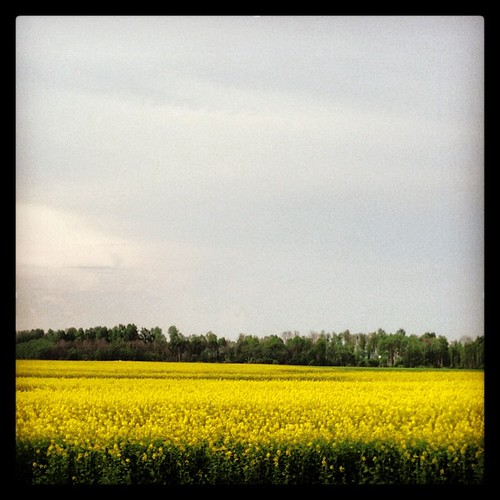 nature latvia tukums uploaded:by=instagram foursquare:venue=4f7ef957e4b0eb3437aef6a4