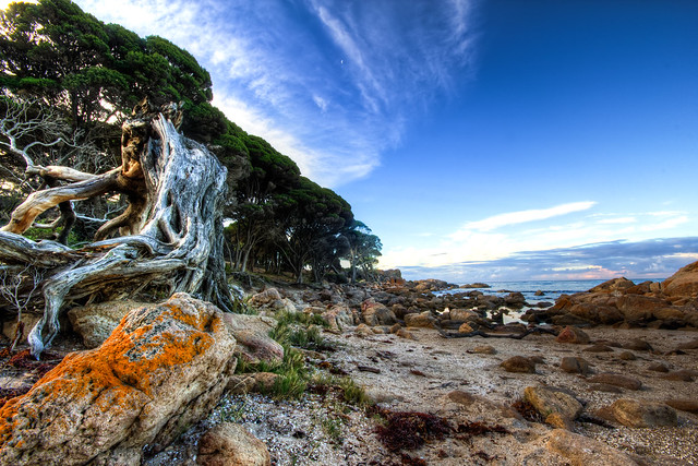 Bunker Bay, Western Australia