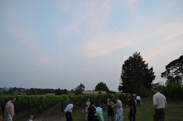 timandnatalia_wedding_reception_france_twilight_vineyard_guests_moon