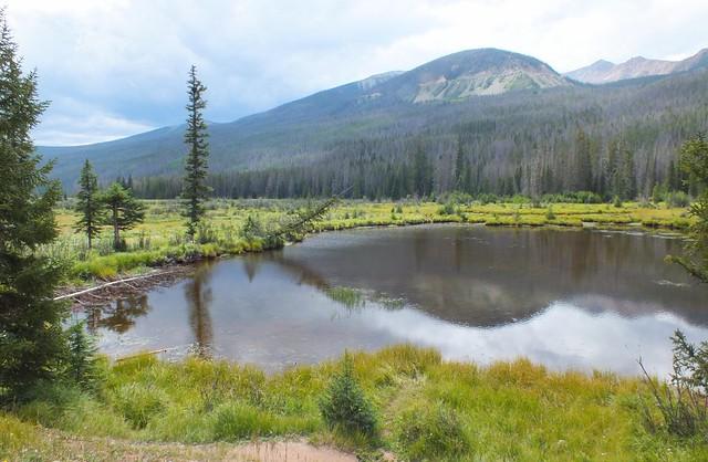 Beaver Ponds, RMNP