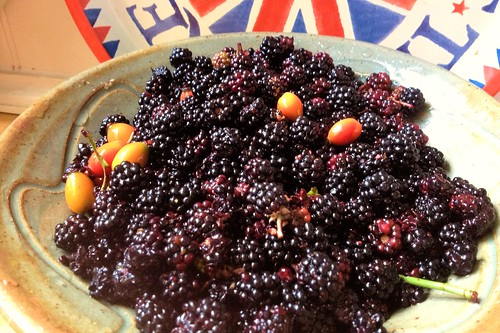Blackberrying September 2013