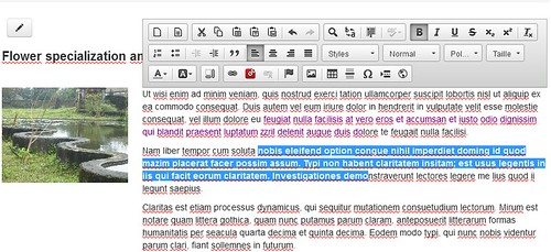 Front-end editing Rubedo