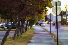 College Avenue; Waterville, Maine