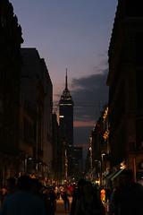 Madero al anochecer