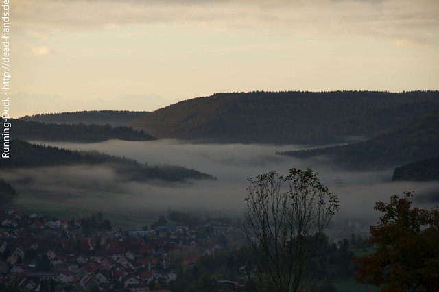 Nebel am Morgen
