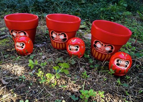 だるま植木鉢