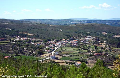Semitela - Portugal