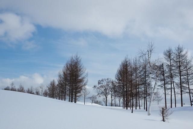 写真_冬をエピローグ