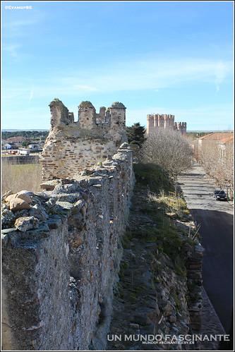 Muralla de Coca con el Castillo al fondo