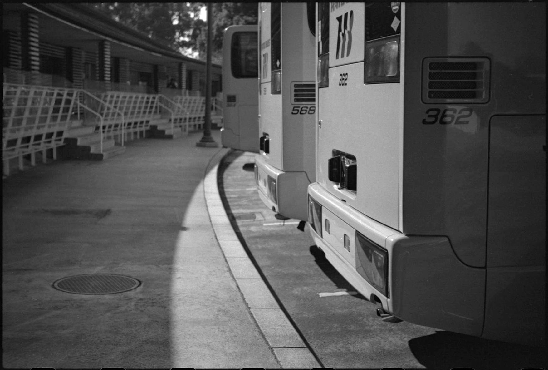 20140116 Leica3f Elmar50 Efke50 T-maxDeveloper 031