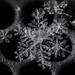 Snowflake On Metal by Zircon_215