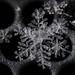 Snowflake On Metal by Zircon_215