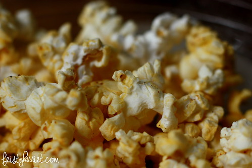 Macro_Popcorn1_FeistyHarriet_Feb2014