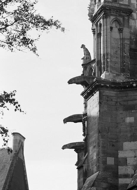 Reims_08
