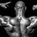 2017_04_15 J-M.B:registered: Open - Fitness - Figure - Bodybuilding
