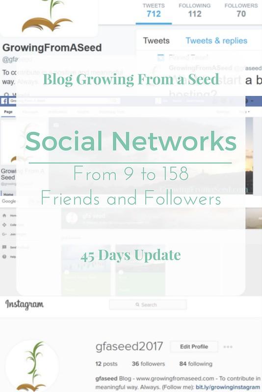 social networks pinterest