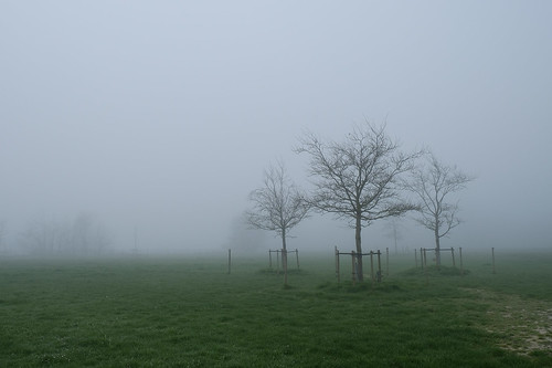 Winter Spring Hooglede 001.jpg