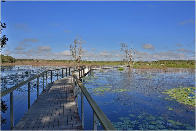 Fogg Dam Wetlands.01A, Canon EOS 5D MARK III, Canon EF 24mm f/2.8 IS USM