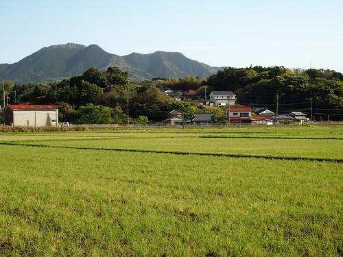 2017-04-19(16.29.49)東後町棚田