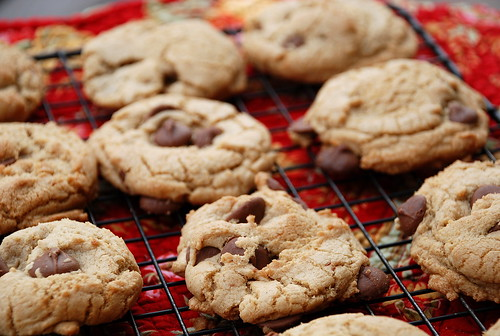 Browned Butter Chocolate Chip Cookies with Sea Salt