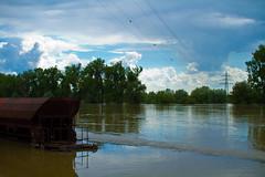 Hochwasser_6.6.13_RAW_roh20130606ROH_4711