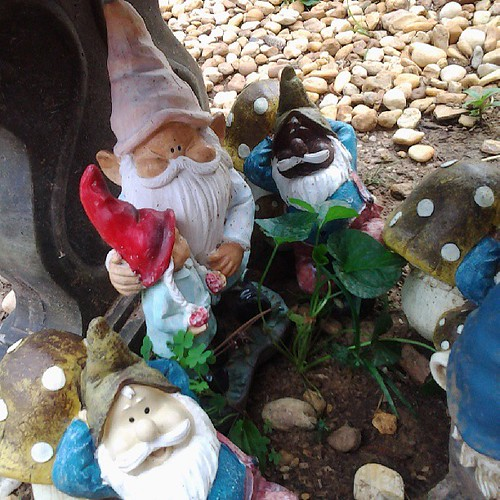 I created gnome diversity in my mom's garden.