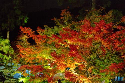 【写真】2012 紅葉 : 永観堂/2020-05-30/IMGP6284