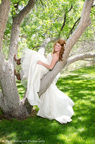 Bride in a Tree - Wedding Photography by Matt Halvorson