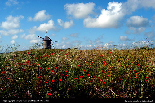 Windmill . Northern France.