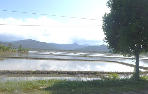 Sulawesi13-Pare Pare-Palopo (34)