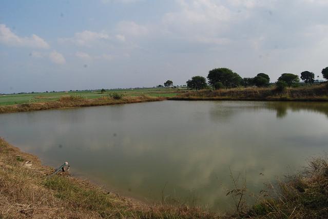 Rewa Sagar