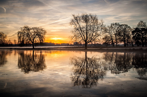 morning winter england sky sun reflection water clouds sunrise season unitedkingdom surrey bushypark