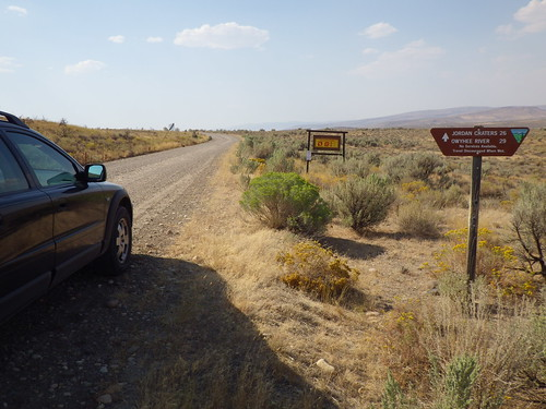 oregon habitat jordanvalley cheatgrass bromustectorum disturbedsite sagebrushsteppe wyomingbigsagebrush artemisiatridentatawyomingensis