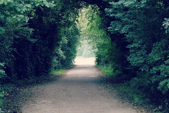 country_path_way