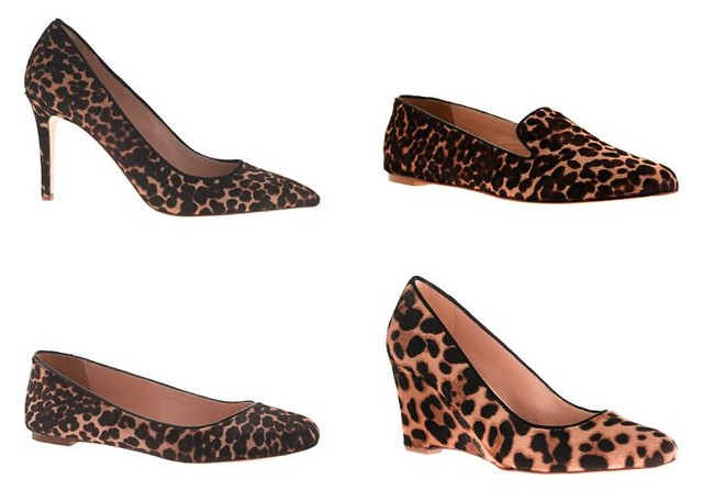 09.17.13_leopard