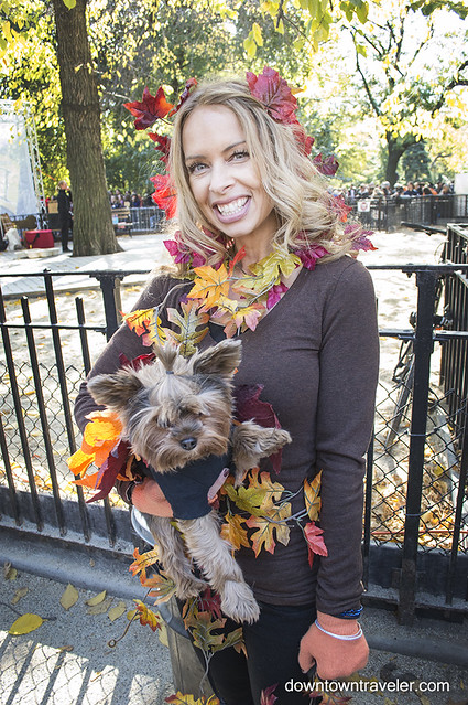 Halloween Dog Costume_Fall Leaves_Buddy the Yorkie