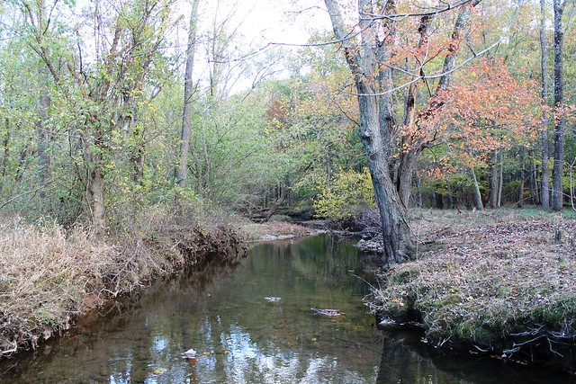 Image of the Hawlings River, a subwatershed of the Patuxent River.