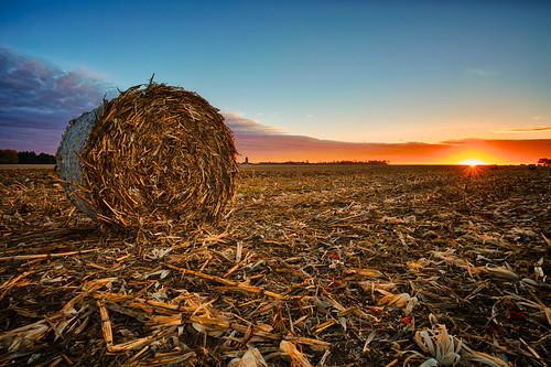 morning autumn sky food fall field clouds sunrise season daylight early corn cornfield day shine pennsylvania earth farm seasonal harvest roadtrip farmland silo soil land roll hay hdr highdynamicrange drying plentiful
