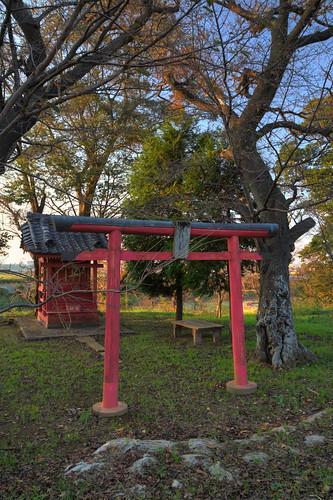阿須波神社2013年11月