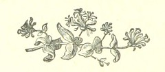 Image taken from page 130 of 'Up Hill. A novel'