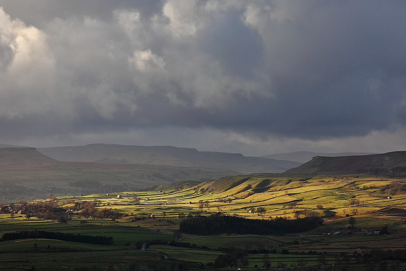 Beautiful light in this landscape photo of Wensleydale, near Leyburn and Redmire, in the Yorkshire Dales.