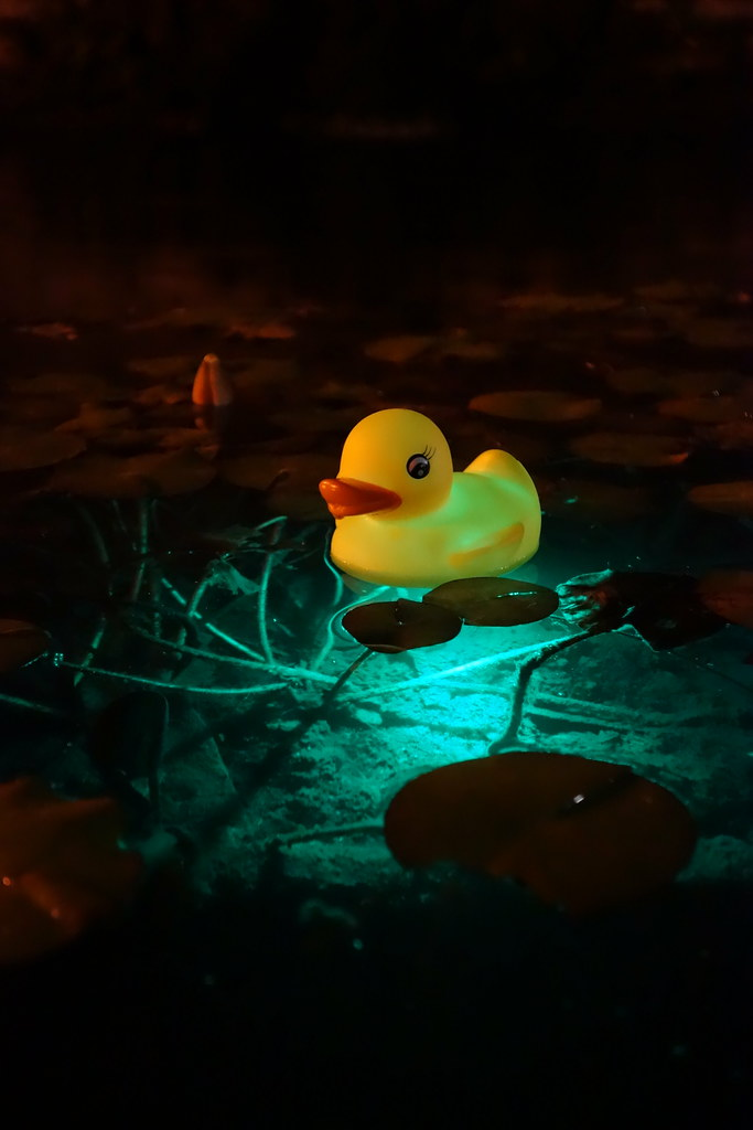 Glow in the Duck