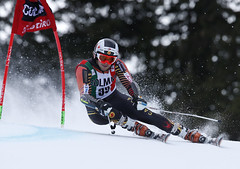 Phil Brown competes in the giant slalom in Alta Badia, ITA