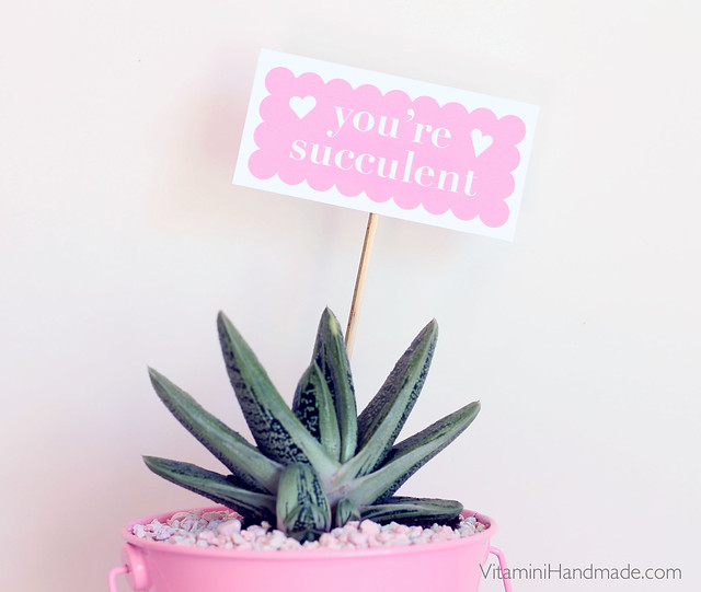 DIY Valentine Succulent Planters